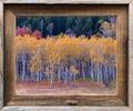frames, barnwood, open edition, paper print, rustic