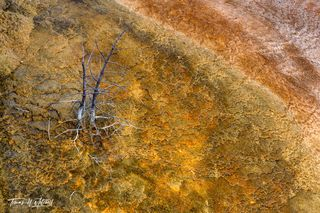 On Location at Yellowstone | Fine Art Photography
