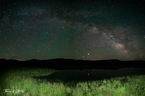 limited edition, fine art, prints, frog pond, night sky, galaxy, green grass, swamp, photograph, stars, reflecting, milky way, water