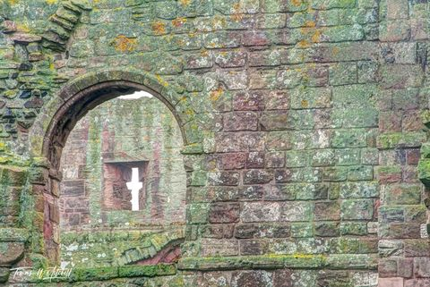 limited edition, museum grade, fine art, prints, window, lindisfarne, england, catholic, priory, rock, walls, moss, lichen, color, photograph, norman, benedictine, henry VIII, church