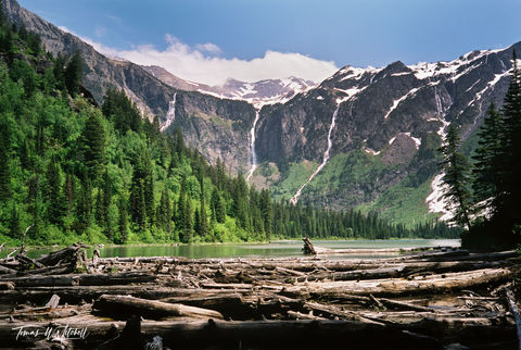 limited edition, fine art, prints, photograph, film, avalanche lake, glacier national park, montana, log jam, waterfall, peaks, blue sky, clouds, summer, mountain,