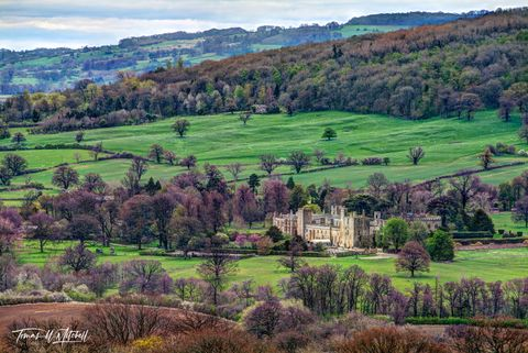 limited edition, museum grade, fine art, prints, sudeley castle, cotswolds, winchcombe, gloucestershire, england, 15th century, castle, garden, english countryside, photograph, scenery,  trees, spring