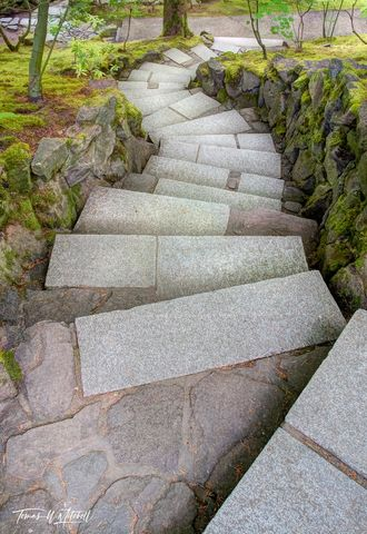 limited edition, fine art, prints, japanese garden, portland, oregon, stairs,
