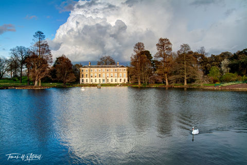 limited edition, museum grade, fine art, prints, kew gardens, swan, lake, london, england, botanic garden, exotic, middlesex, kew, explore, photographs, billowing clouds, museum, reflection