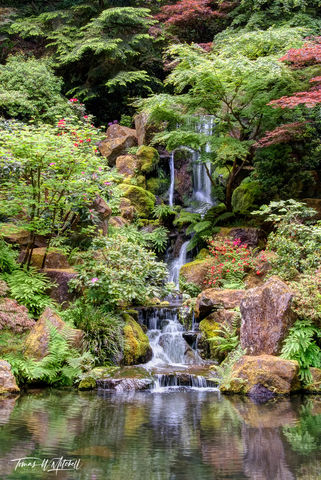 limited edition, fine art, prints, japanese garden, portland oregon, photograph, heavenly falls, summer, waterfall, pond,