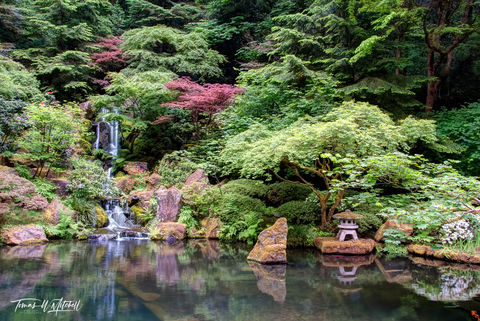 limited edition, fine art, prints, japanese garden, portland oregon, heavenly falls, photograph, stone lantern, waterfall, summer, reflection