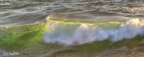 limited edition, fine art prints, pacific grove, california, waves, shore, water, photographing, photograph, ocean, panoramic, green
