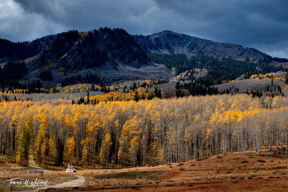 limited edition, fine art, prints, photograph, guardsman pass, utah, colors, tepee, dirt road, golden, yellow, aspen, trees, stormy, clouds, mountain, camp, autumn