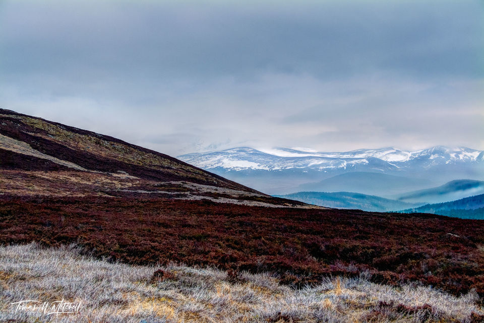 limited edition, fine art, prints, stonehaven, a944, cairngorm mountains, scotland, mountains, snow, moor, heather, layers, colors, rusty, red, photograph