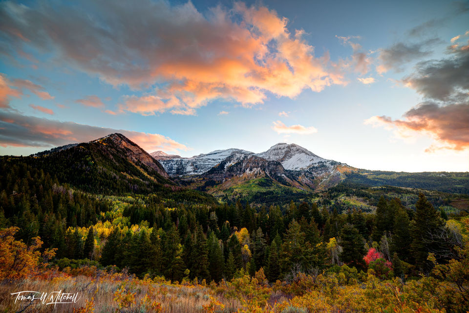 limited edition, fine art, prints, fall, sunset, timp, mount timpanogos, mountain, rock, rocky mountains, light, yellow, green, oaks, red, pink, clouds, aspens, maple, autumn