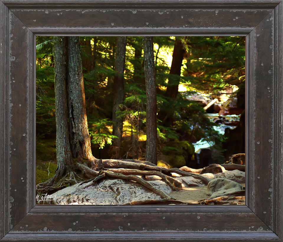 photograph, framed, rustic, paper print,