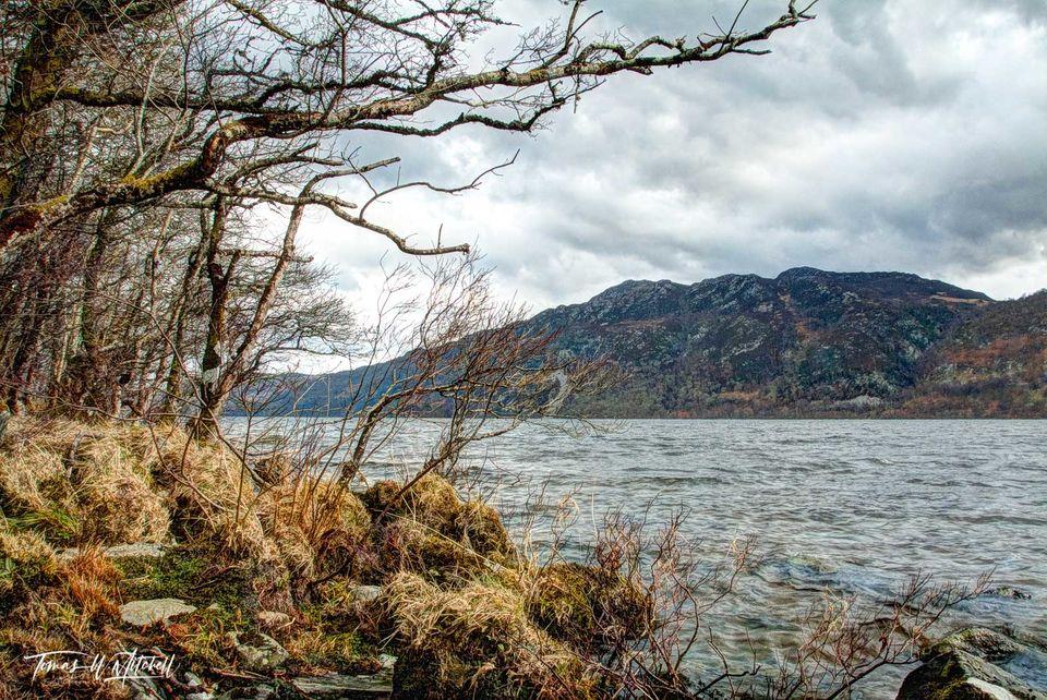 limited edition, fine art, prints, loch ness, scotland , shoreline, trees, grass, moss, clouds, water, gaelic