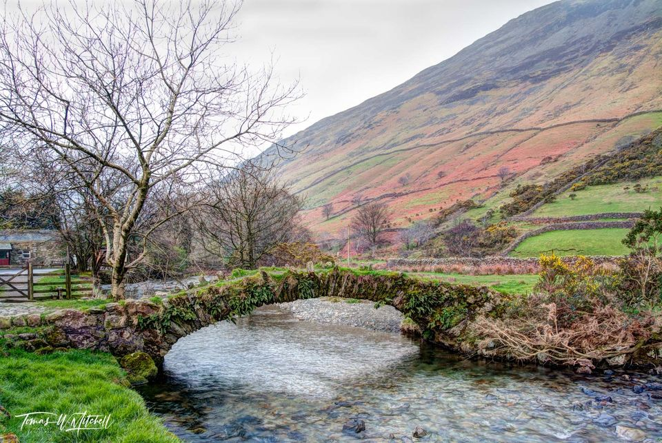 pack horse bridge, wasdale head, england, lake district, limited edition, museum grade, fine art, 1700's, stone bridge, old bridge, bridge, colors, sheep fields, rock walls, hillside, yellow, gorse, f