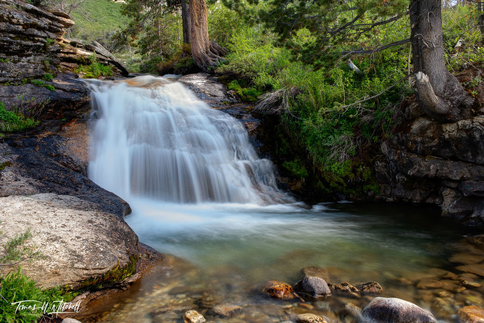 limited edition, fine art, prints, thomas canyon campground, nevada, waterfall, pool, trees, rock, lamoille,