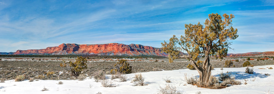 limited edition, fine art, prints, vermilion cliffs, highway 89, arizona, utah, kanab, photograph, snow, winter, clouds, sun, trees, juniper, tree