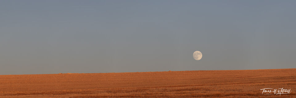 limited edition, fine art prints, antelope island, utah, great salt lake, photograph, moon, evening light, panoramic,