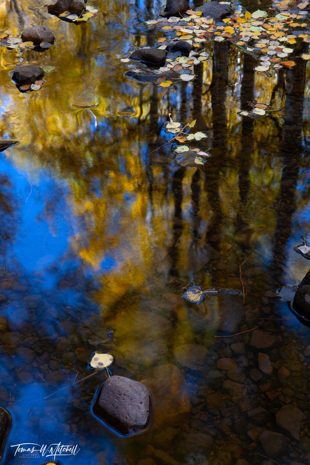 limited edition, fine art, prints, photograph, oakley utah, autumn, water, rock, trees, abstract