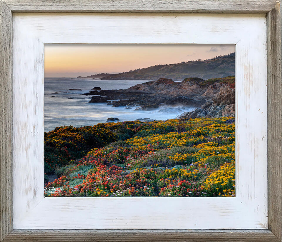 photograph, frame, barnwood, paper print, your choice