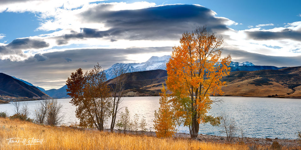 limited edition, fine art, prints, deer creek reservoir, utah, shoreline, panoramic, photograph, grass, rocks, water, hills, mountain, clouds, yellow, trees, fall