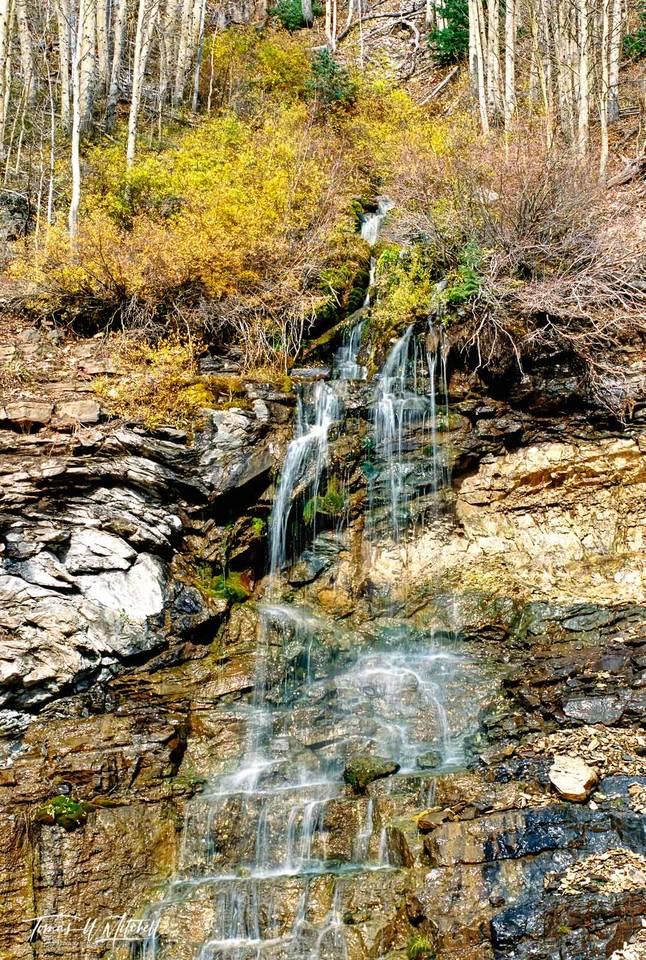 limited edition, fine art, prints, photograph, highway 550, colorado, durango, waterfall, yellow, williows, apsen, trees, water, rocks, autumn