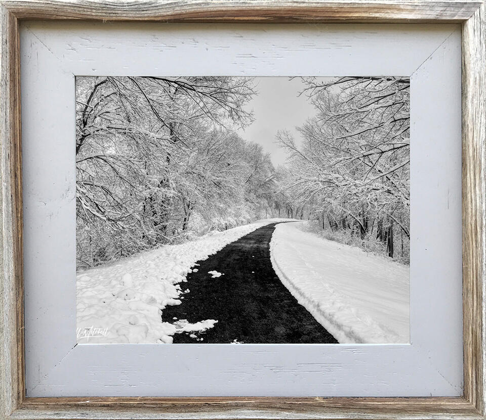 photograph, framed, rustic, barnwood, frame, paper print, open edition