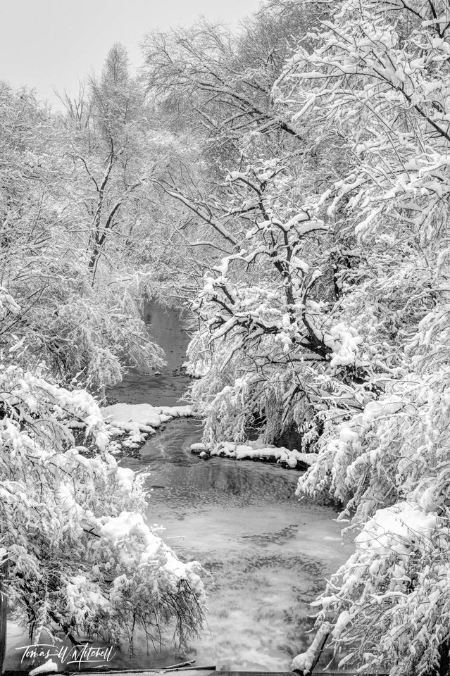 limited edition, fine art, prints, photograph, wheeler historic farm, utah, snowfall, snow, winter, trees, water, black and white