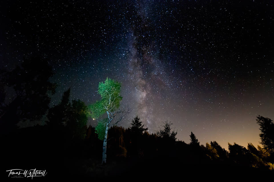 limited edition, fine art, prints, summer, oakley, utah, mountains, sky, stars, trees, milky way, photograph, aspen, night,