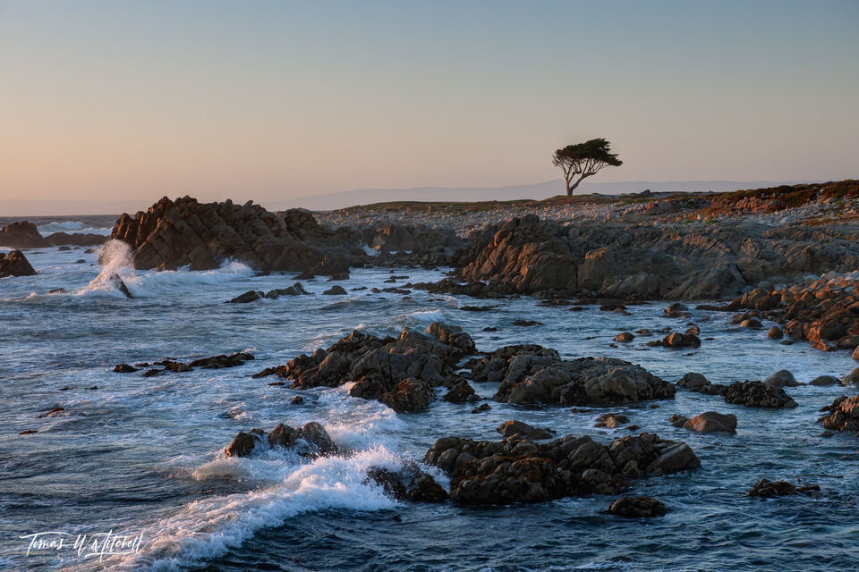 limited edition, fine art prints, pebble beach, California, coastline, Monterey peninsula, point joe, golf course, sunset, waves, tree