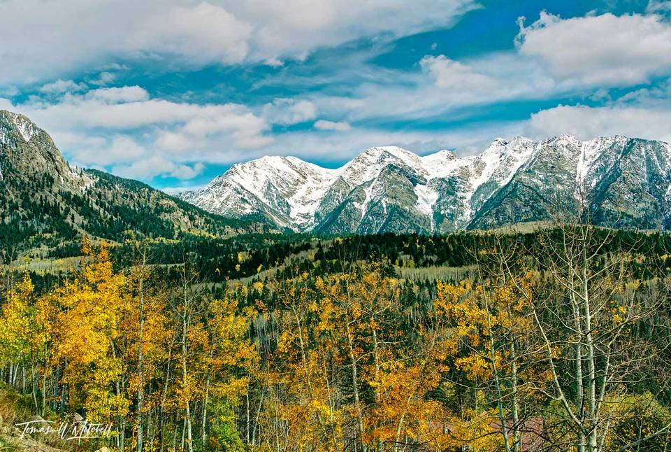 limited edition, fine art, prints, photograph, west needle mountains, colorado, highway 550, purgatory ski resort, mountains, aspen, sunny, blue sky, clouds, trees