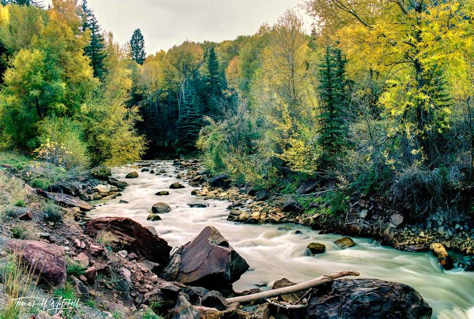 limited edition, fine art, prints, film, uncompahgre river, river, ouray, colorado, autumn, water, colors, trees, rocks, mood, photograph