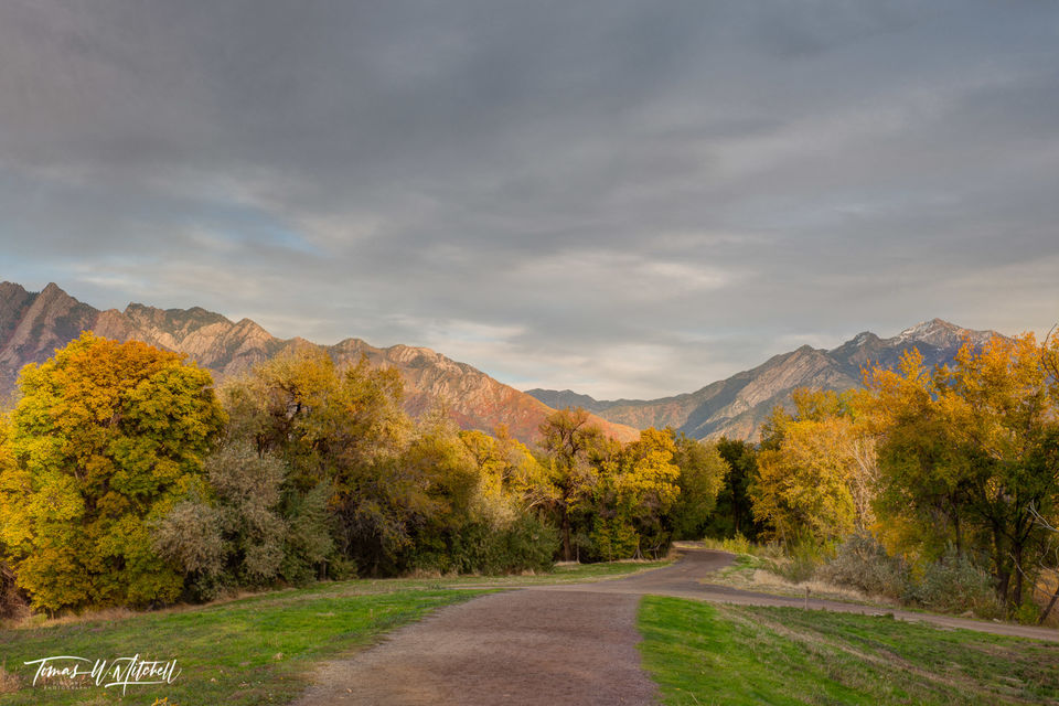 limited edition, fine art, prints, wheeler historic farm, utah, photograph, fall colors, red maples, mountains, country road, trees, grass, gray sky