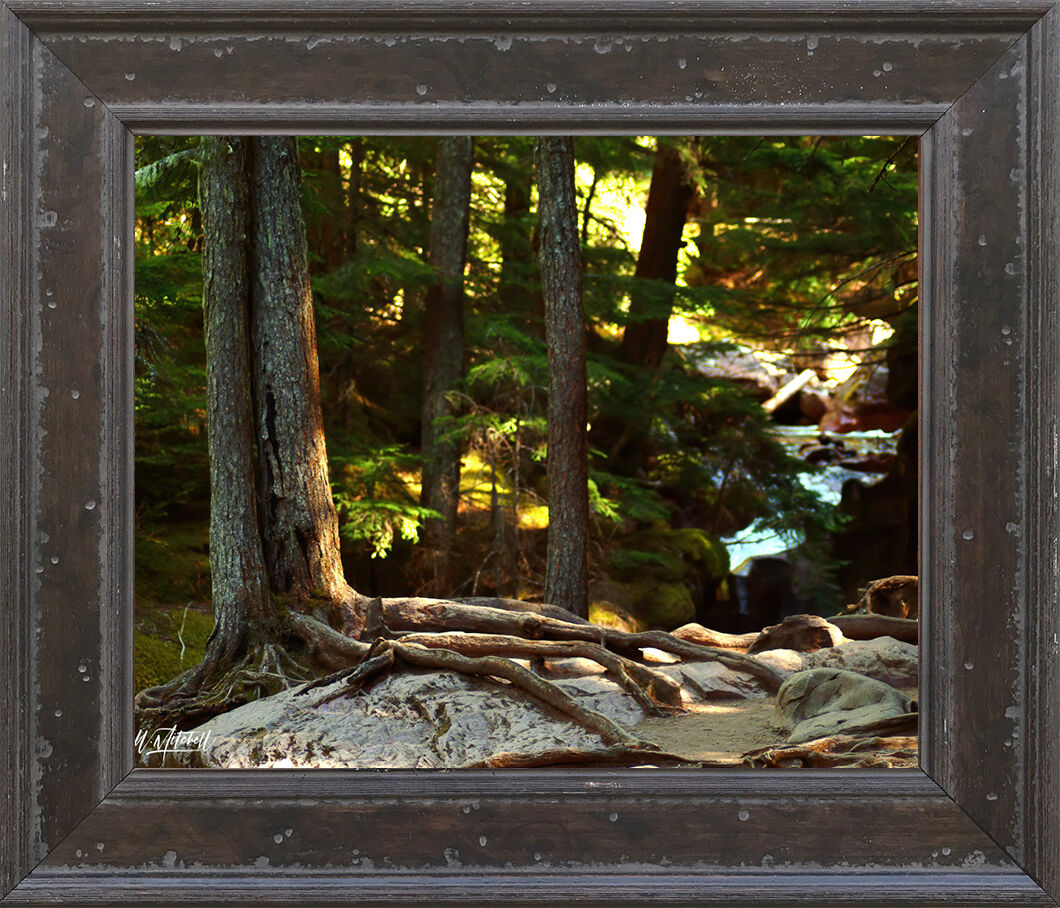 photograph, framed, rustic, paper print, , photo