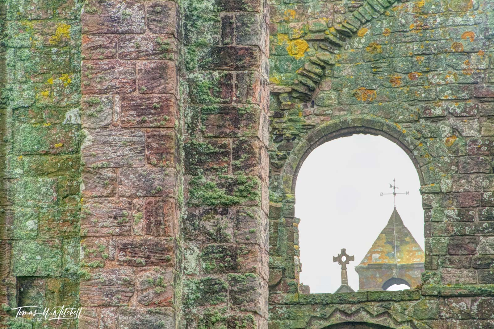 limited edition, museum grade, fine art, prints, window, lindisfarne, england, catholic, priory, rock, walls, moss, lichen, color, photograph, norman, benedictine, henry VIII, church, photo