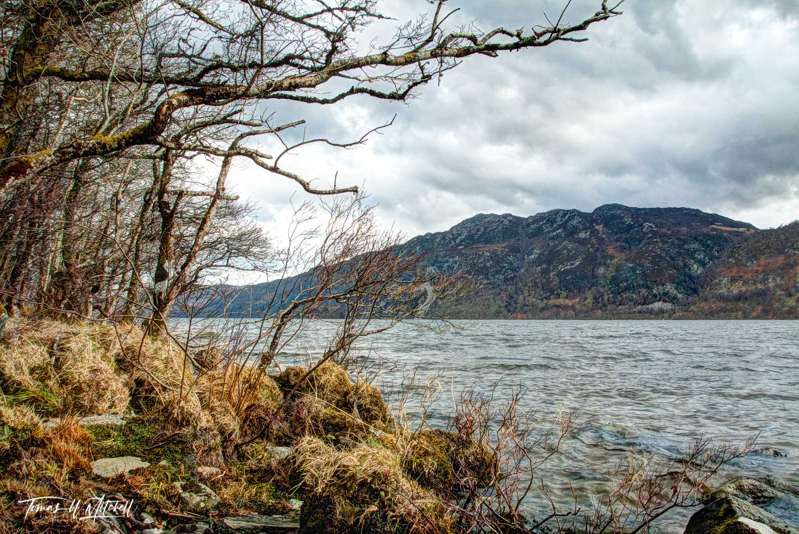limited edition, fine art, prints, loch ness, scotland , shoreline, trees, grass, moss, clouds, water, gaelic, photo