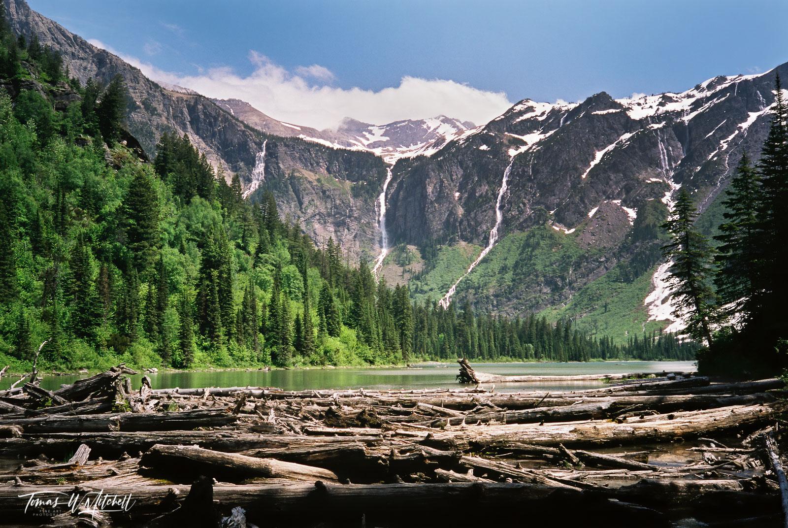 limited edition, fine art, prints, photograph, film, avalanche lake, glacier national park, montana, log jam, waterfall, peaks, blue sky, clouds, summer, mountain, , photo