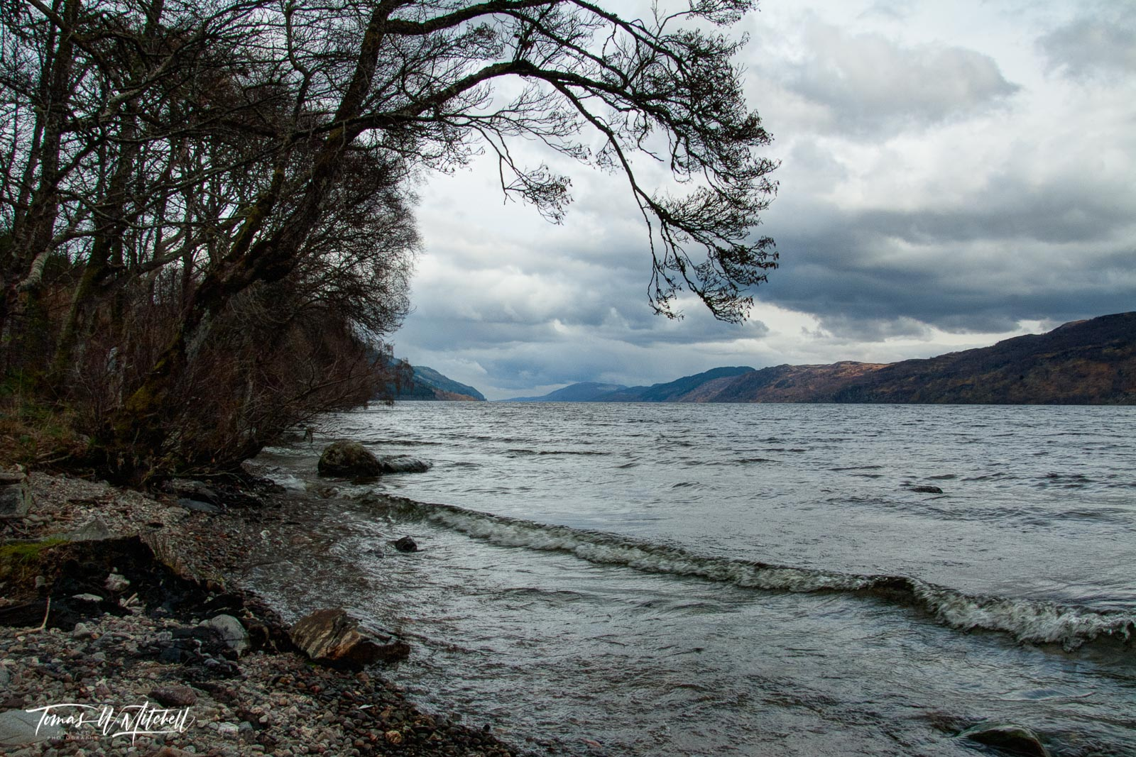 limited edition, fine art, prints, loch ness, scotland, inverness, tree, overcast, mood, mystery, photo