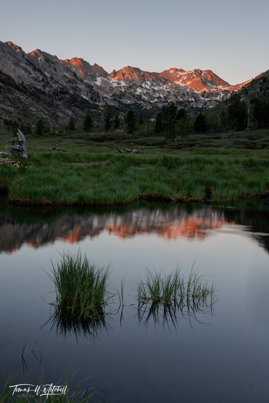 Limited Edition, fine art prints, HUMBOLDT-TOIYABE NATIONAL FOREST, NEVADA, Lamoille Canyon, Ruby Mountains, photograph, beaver pond, reflection,, photo