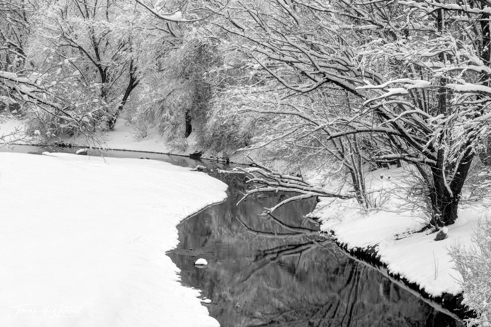 limited edition, fine art, prints, photograph, wheeler historic farm, utah, snow storm, contrast, black and white, stream, reflecting, water, winter, trees, silent series, photo