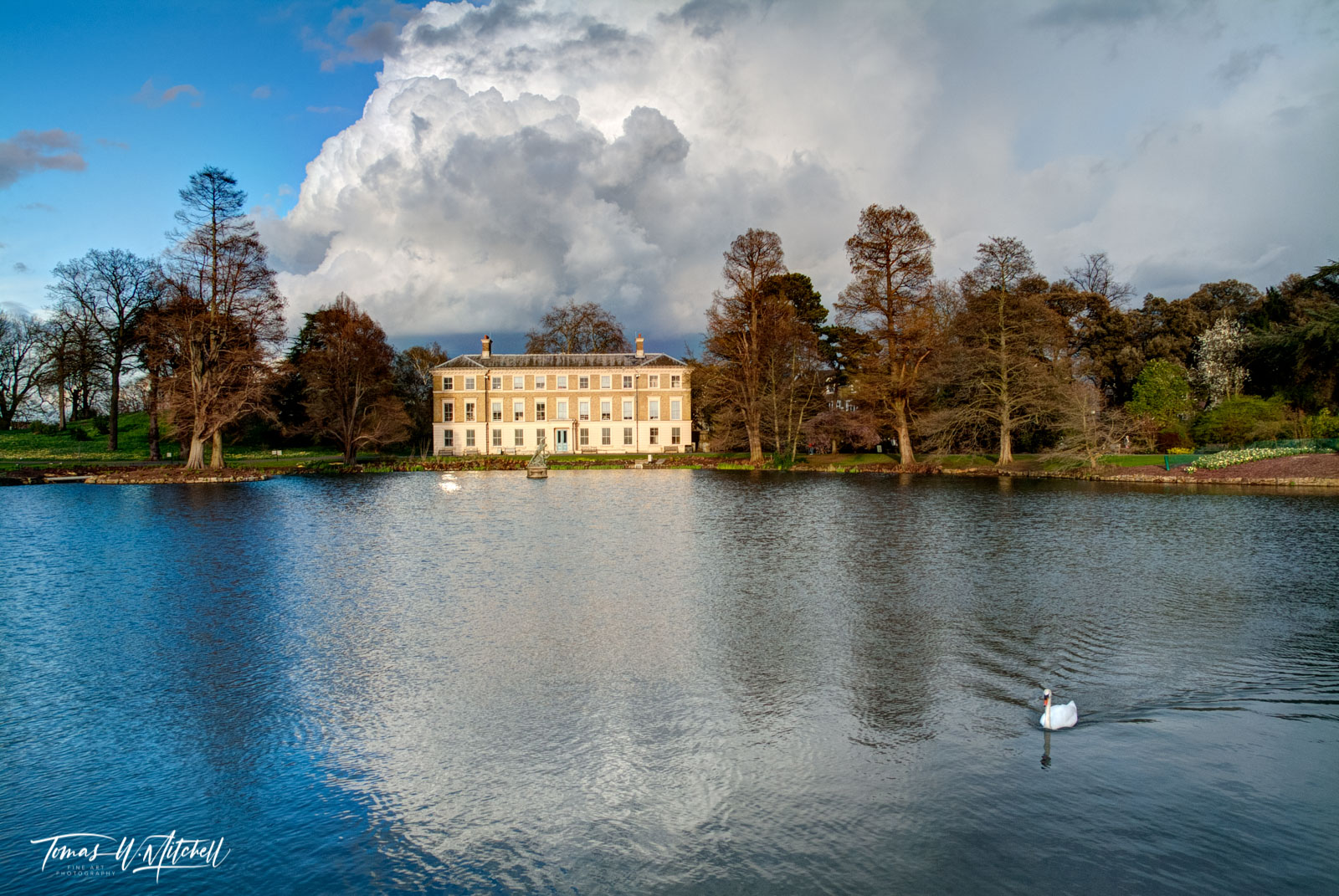 limited edition, museum grade, fine art, prints, kew gardens, swan, lake, london, england, botanic garden, exotic, middlesex, kew, explore, photographs, billowing clouds, museum, reflection, photo