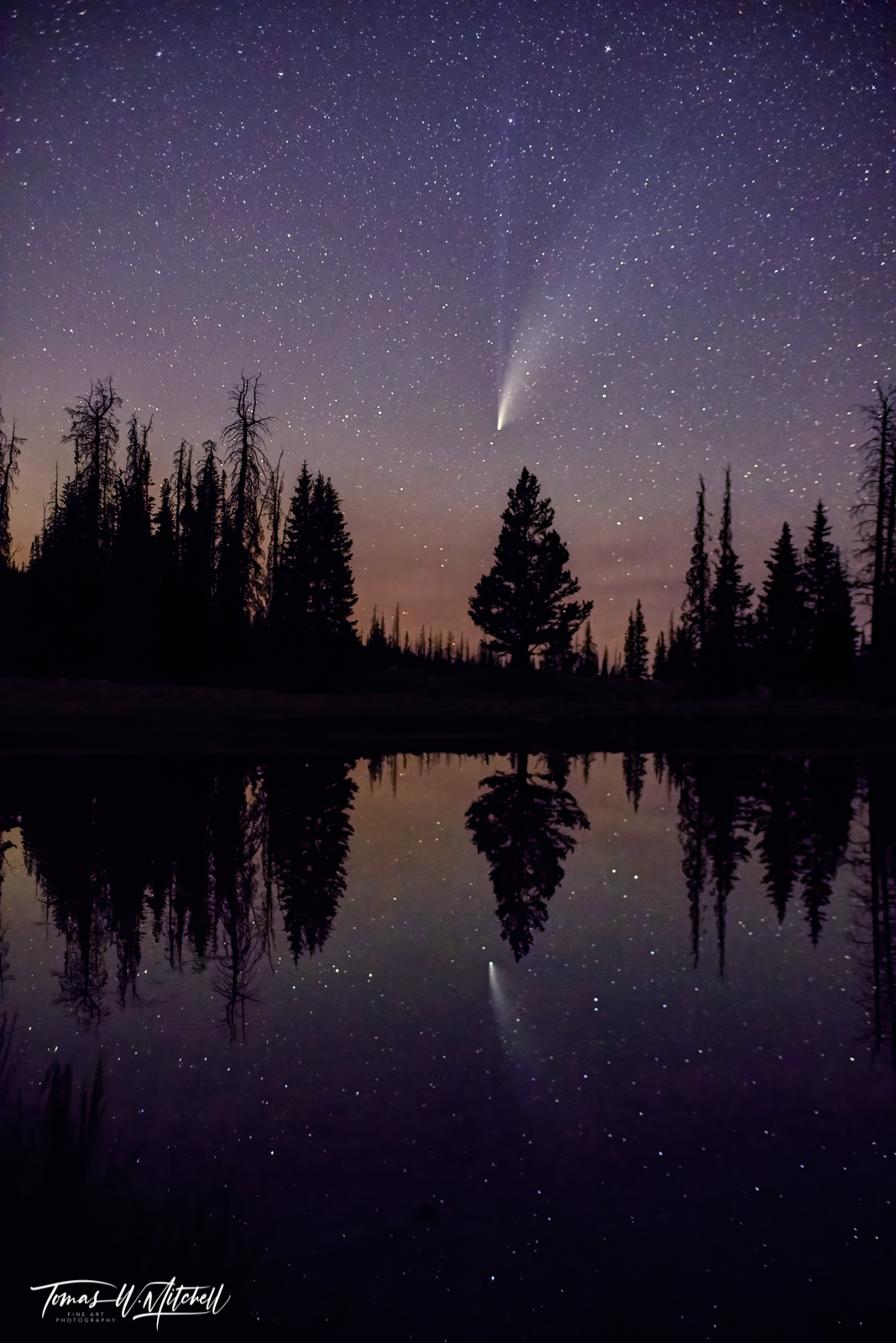 limited edition, fine art, prints, night sky, comet neowise, uinta wasatch cache national forest, psalm 19:1, heavens, god, bible, photograph, reflection, pond, trees, photo