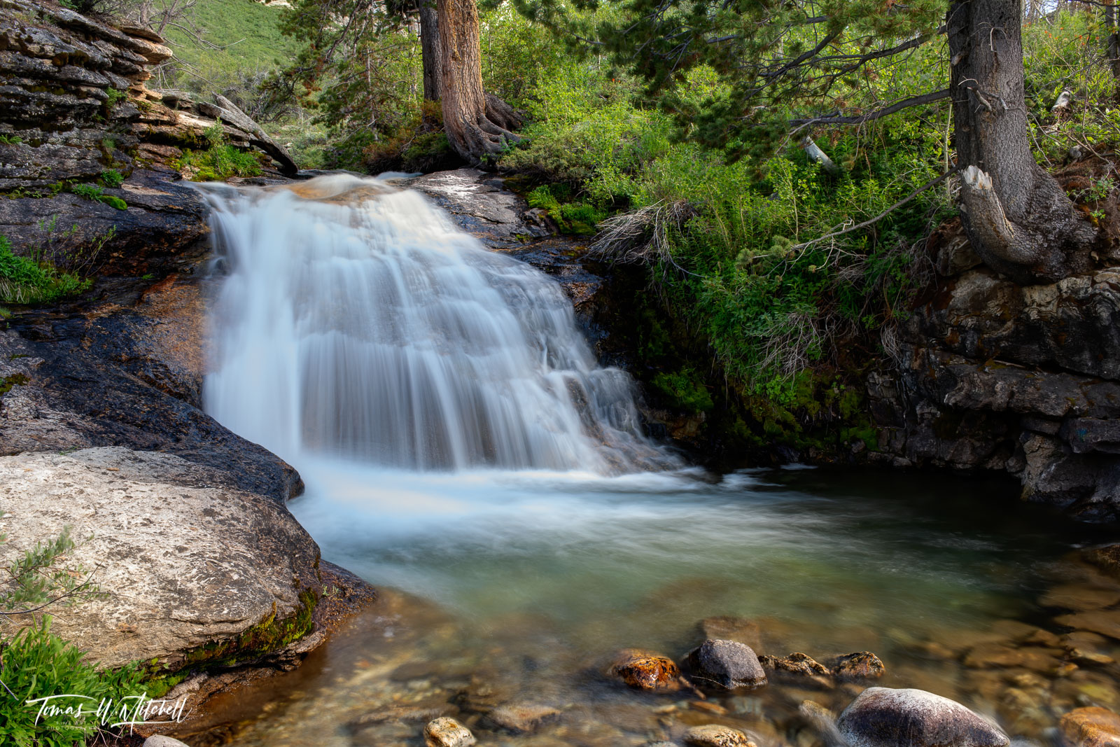 limited edition, fine art, prints, thomas canyon campground, humbult toiyabe national forest, nevada, waterfall, pool, trees, rock, lamoille, , photo