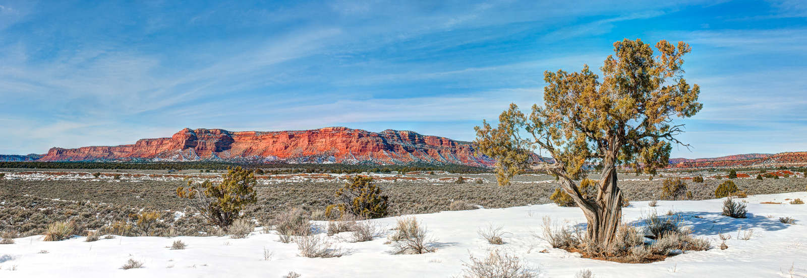 Limited Edition of 100 Museum Grade, Fine Art Prints. I was traveling to Arizona on 1/31/17 when I came across this scene east...