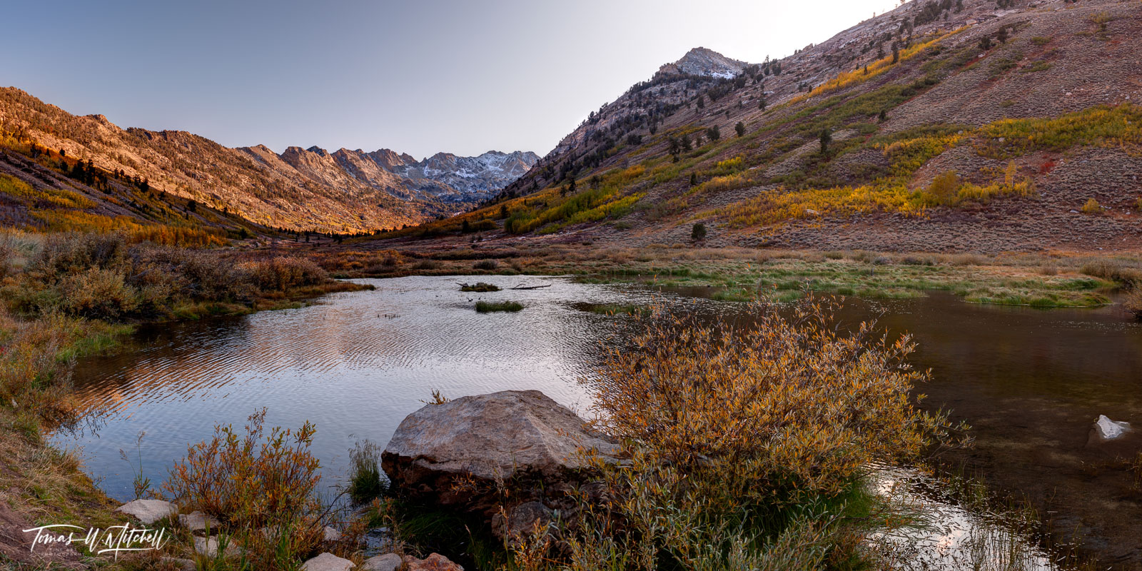 limited edition, lamoille canyon, nevada, bolder, grass, leaves, photograph, willow bush, reflections, pond, aspen trees, yellow, fall colors, peaks, snow, autumn, panoramic, photo