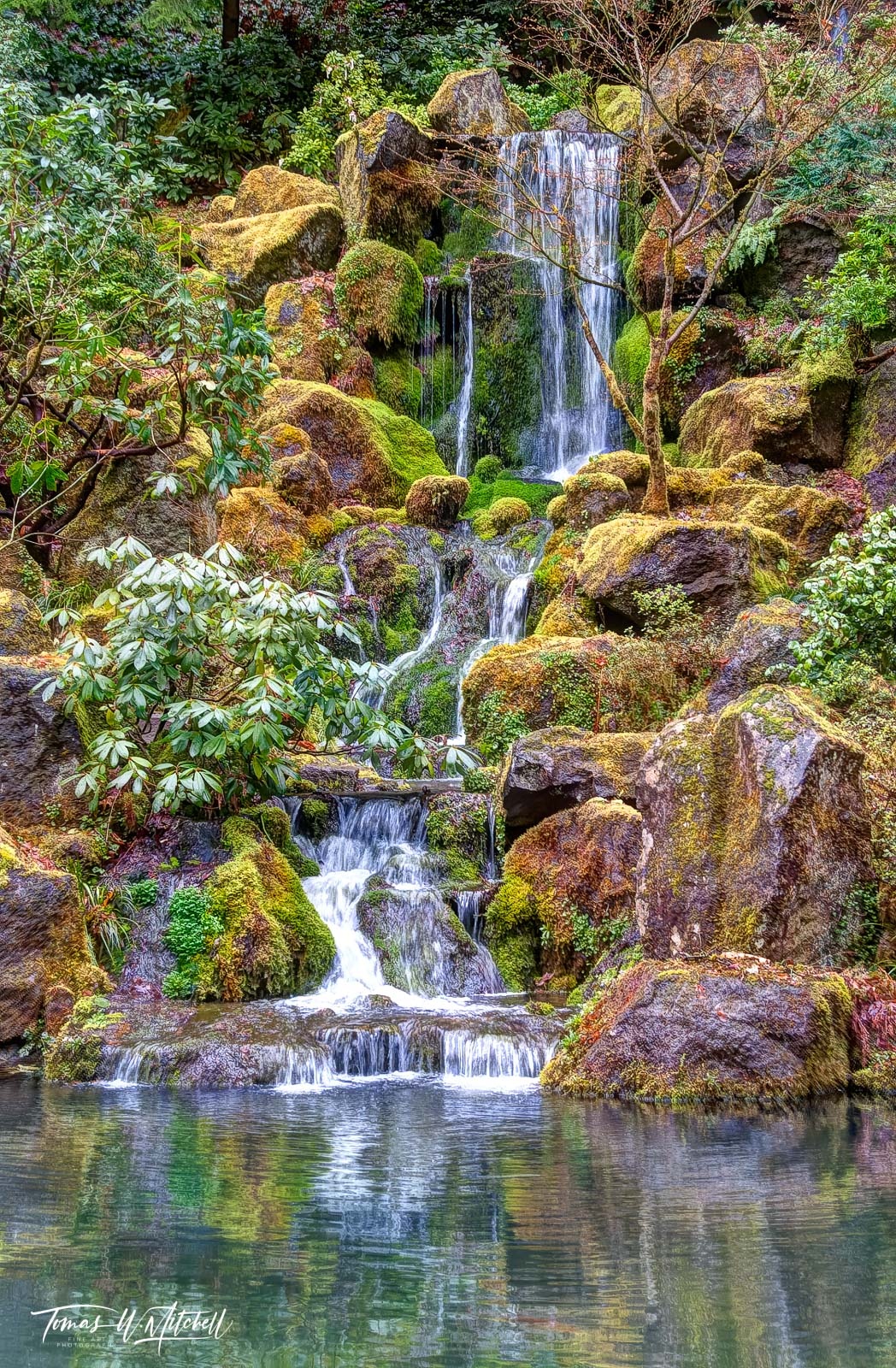 limited edition, fine art, prints, photograph, japanese garden, portland oregon, heavenly falls, waterfall, moss, rocks, green, yellow, tree, reflection, photo
