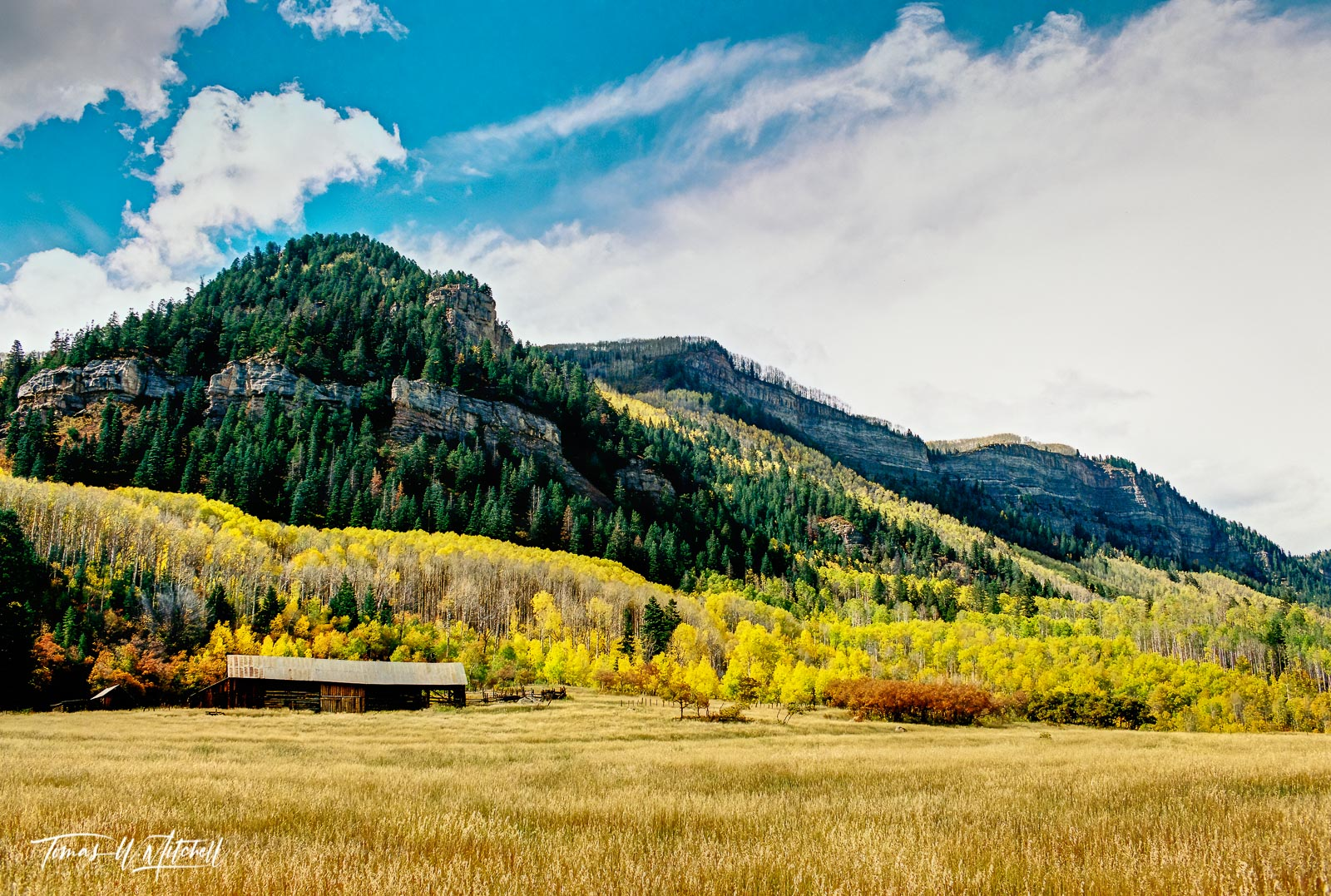 limited edition, fine art, prints, photograph, film, hermosa cliffs, cliffs, highway 550, colorado, durango, nikon, traveling, photographing, fall, colors, sky, blue, clouds, grass, aspens, forested, , photo