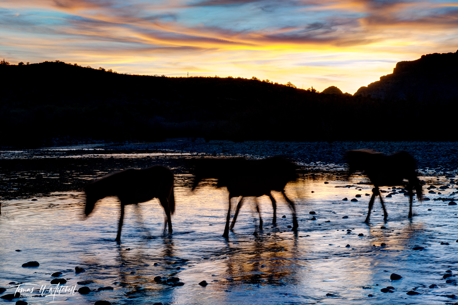 limited edition, fine art, prints, salt river, arizona, wild horses, mustangs, abstract, photograph, sunset, water, twilight, long exposure, photo