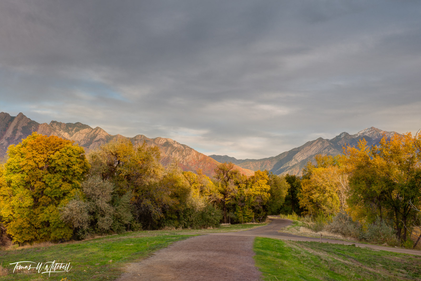 limited edition, fine art, prints, wheeler historic farm, utah, photograph, fall colors, red maples, mountains, country road, trees, grass, gray sky, photo