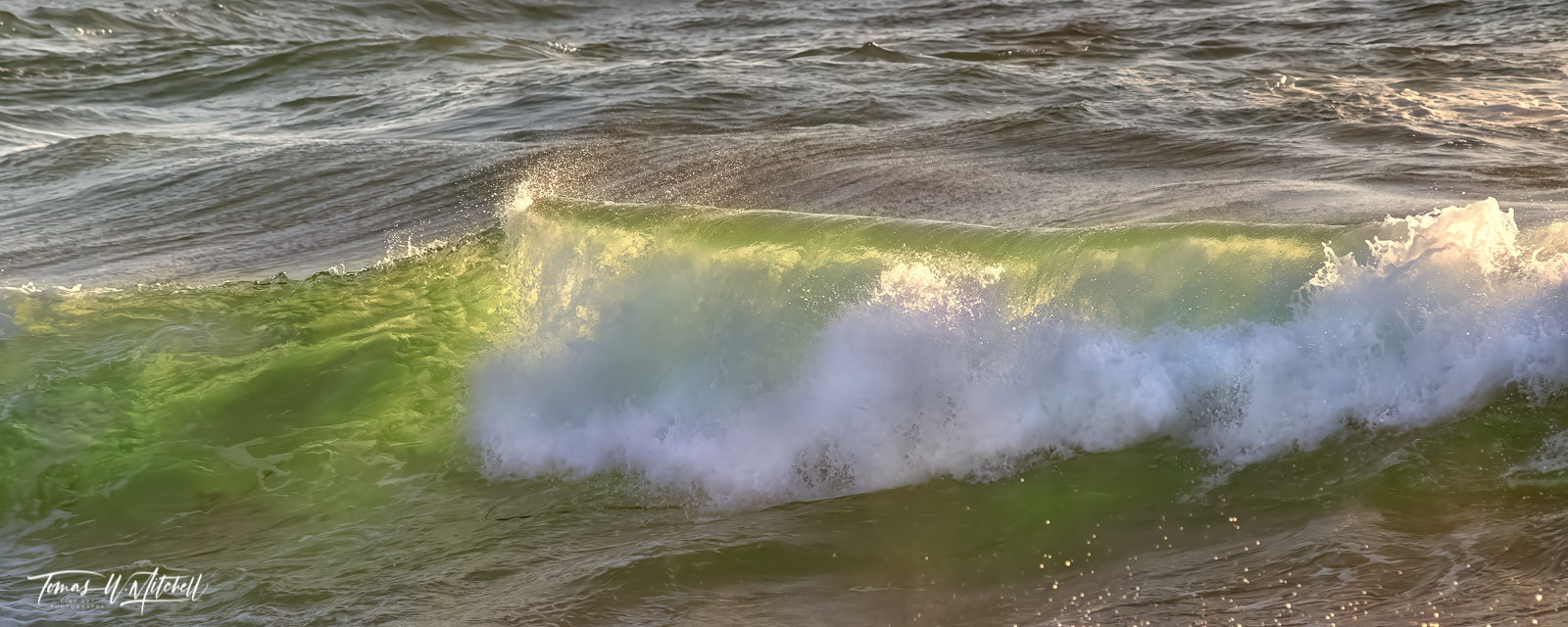 limited edition, fine art prints, pacific grove, california, waves, shore, water, photographing, photograph, ocean, panoramic, green, photo